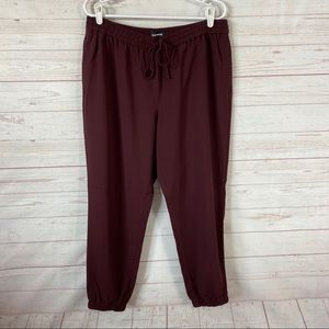 Express Ankle Mid Rise Jogger Pants Large